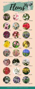 fleurs-hiver-mariage