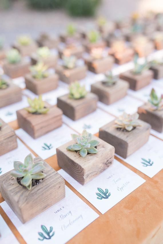 des succulentes ou plantes grasses pour gâter ses proches le jour de son mariage